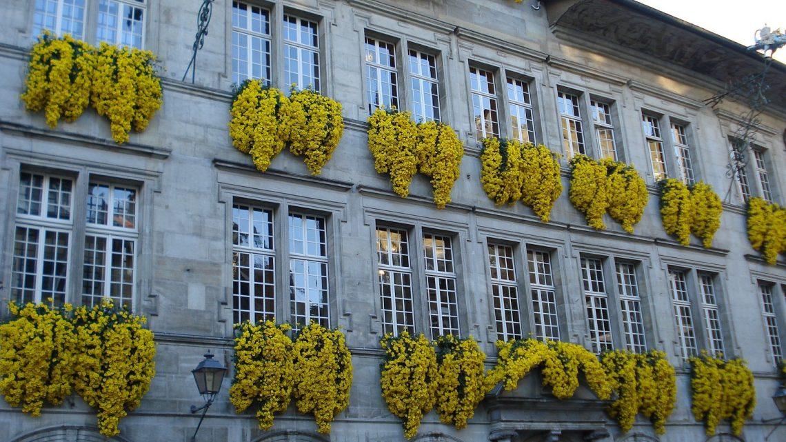 Conception web à Lausanne, prestations professionnelles