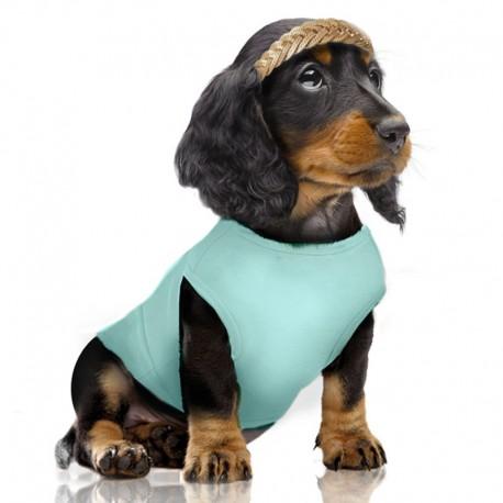 Le tee shirt chien pour un look tendance et personnel