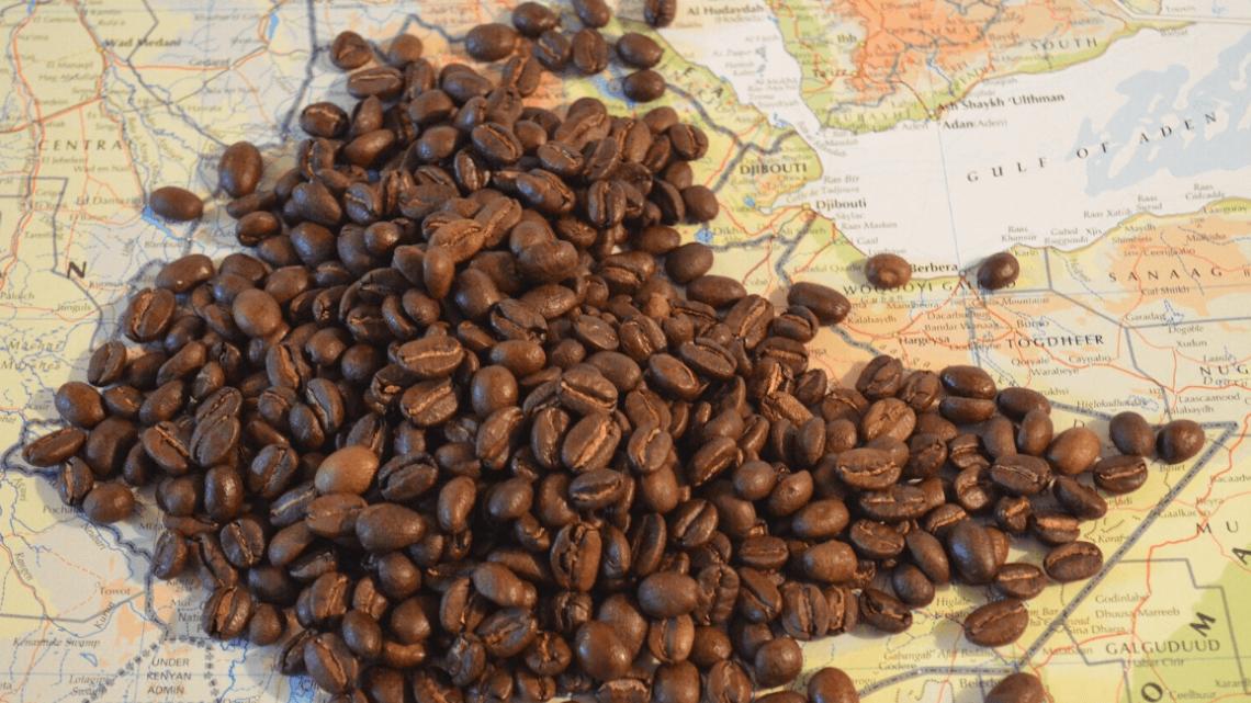Le Moka Harrar, un café grand cru venu d'Ethiopie