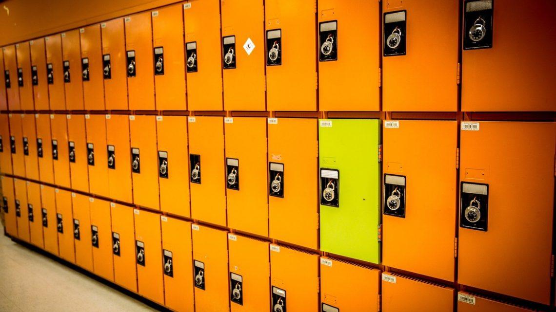 Pourquoi équiper son entreprise de casiers ?